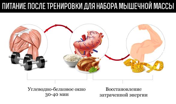Питание после тренировки для набора мышечной массы
