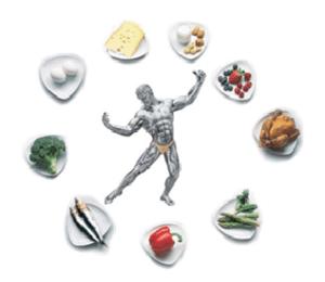 основные задачи спортивного питания для набора мышечной массы