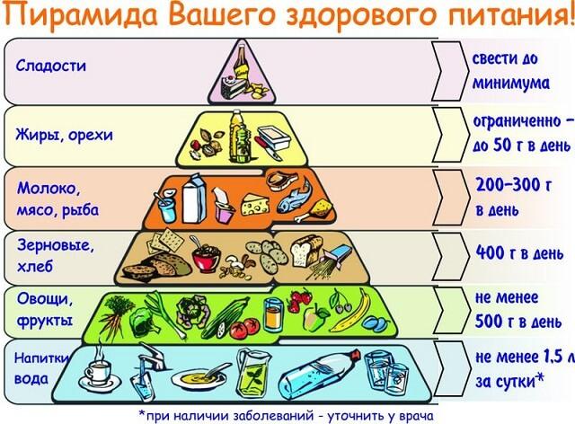 Несколько правил составления правильного рациона сбалансированного питания на день