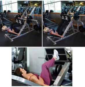 упражнение жим одной ногой в тренажере