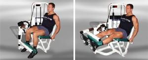 как правильно выполнять упражнение разгибание ног в тренажере сидя