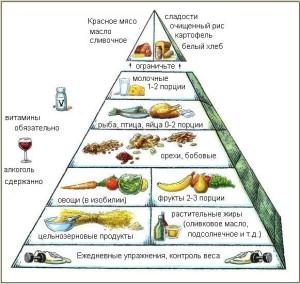 гарвардская пирамида школы общественного здоровья