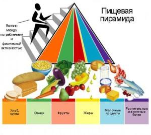 Современная пирамида MyPyramid