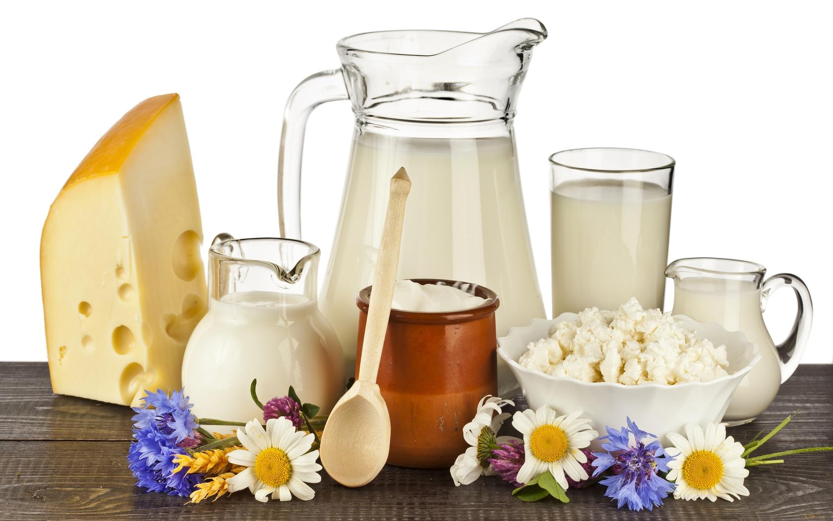 Молочные продукты, входящие в рацион диеты Протасова
