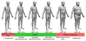 калькулятор расчета индекса массы тела для мужчин