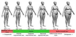 калькулятор расчета индекса массы тела для женщин
