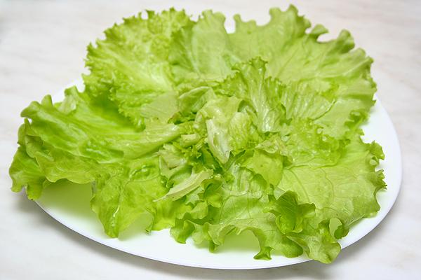 Листья зеленого салата для похудения